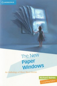 thenewpaperwindows